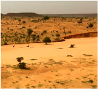 Drought lands in Niger. Image Courtesy of water.worldbank.org.